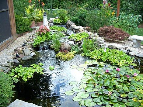 small-garden-ponds.jpg